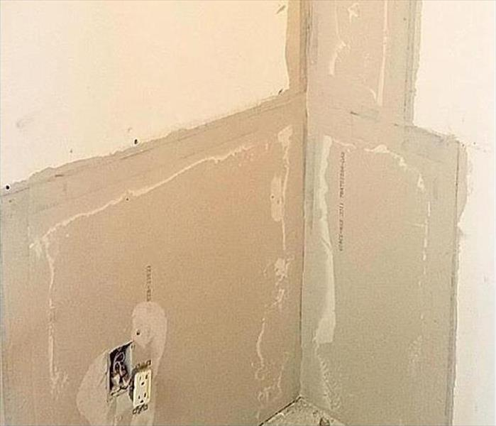 Mold Damage to a Punta Gorda Property After
