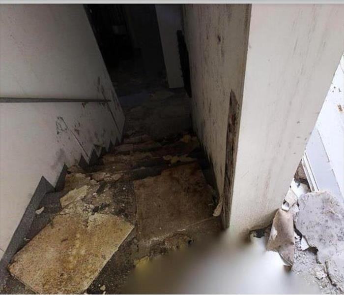 storm damaged home with mold forming