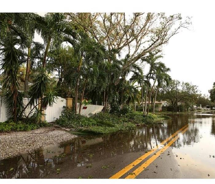 Storm Damage Is Flood Damage to Your Fort Myers Home 'Grouting' on Your Nerves?