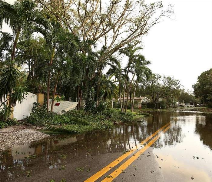 Storm Damage Professional Flood Damage Restoration for Your Fort Myers House