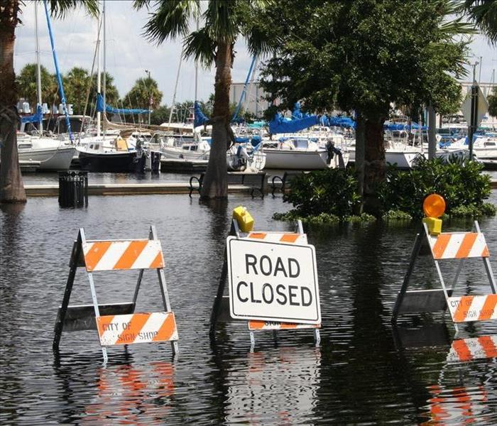 Storm Damage Post-Hurricane Irma Damage Cleanup Hazards In Fort Myers
