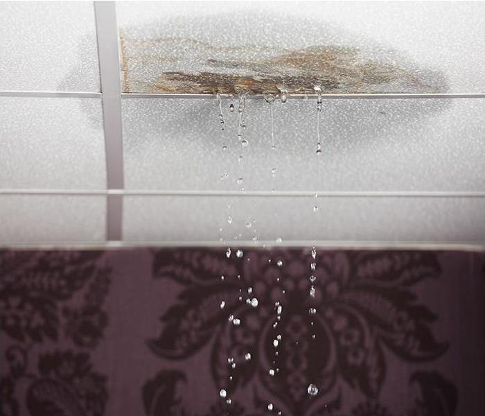 Water Damage Water Damage Causing Grief And Embarrassment In Your Fort Myers Home
