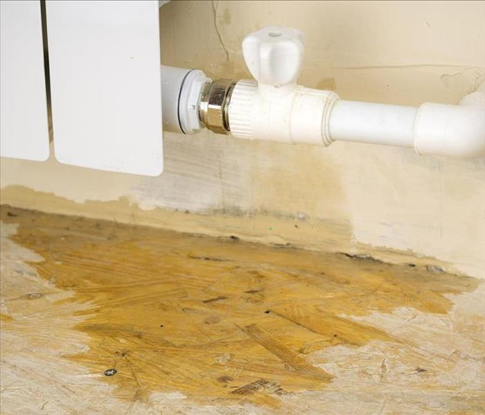 Water Damage A Leaky Pipe Can Lead To Widespread Water Damage In Your Ft. Myers Home
