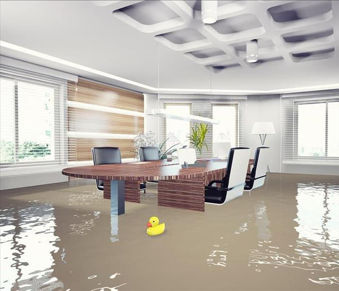Commercial Commercial Water Removal is the Answer to Bayshore Businesses Dealing with Water Problems
